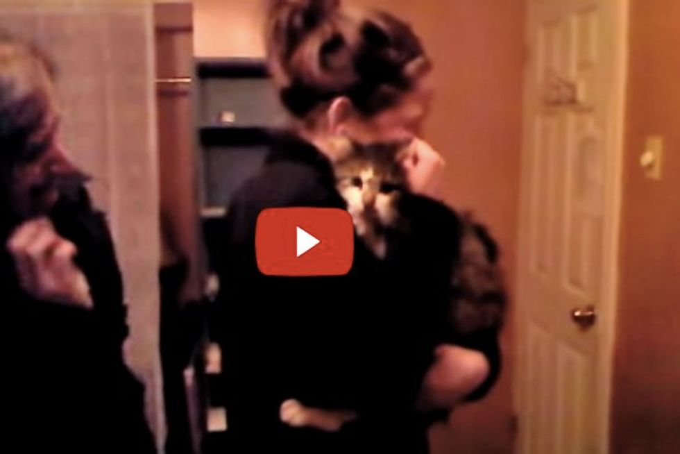 Tito the Cat Reunited with His Mom, a Christmas Miracle!