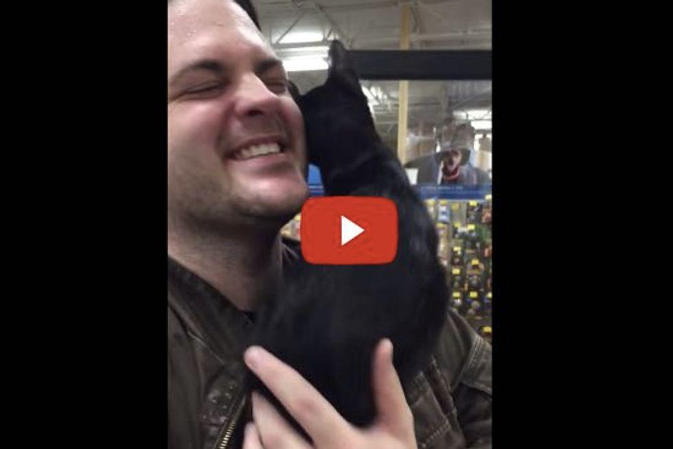 Insanely Affectionate Kitten!