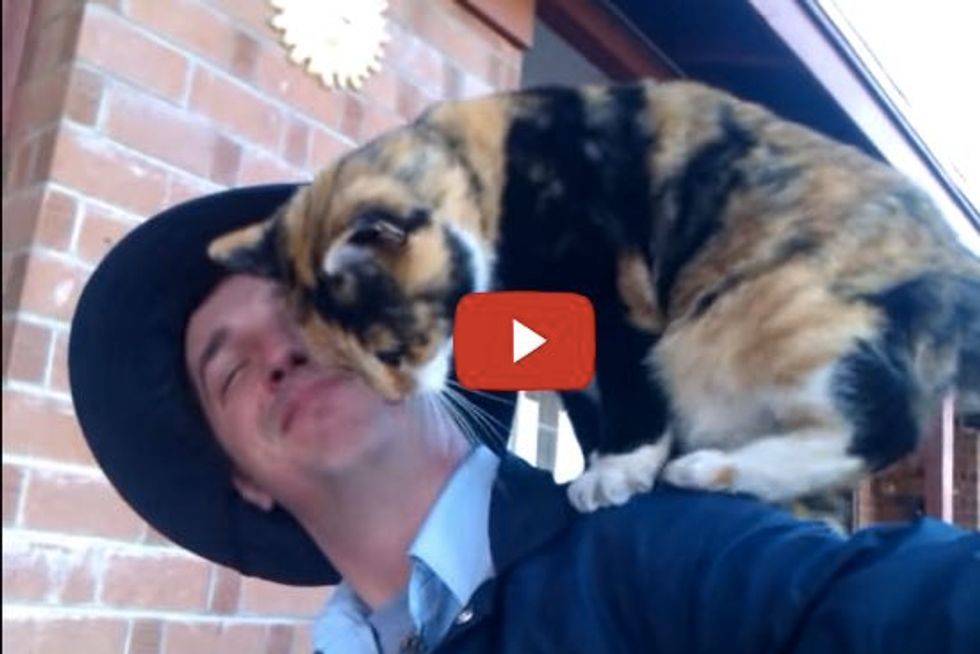 Cats Greet the Mailman Every time He comes Over