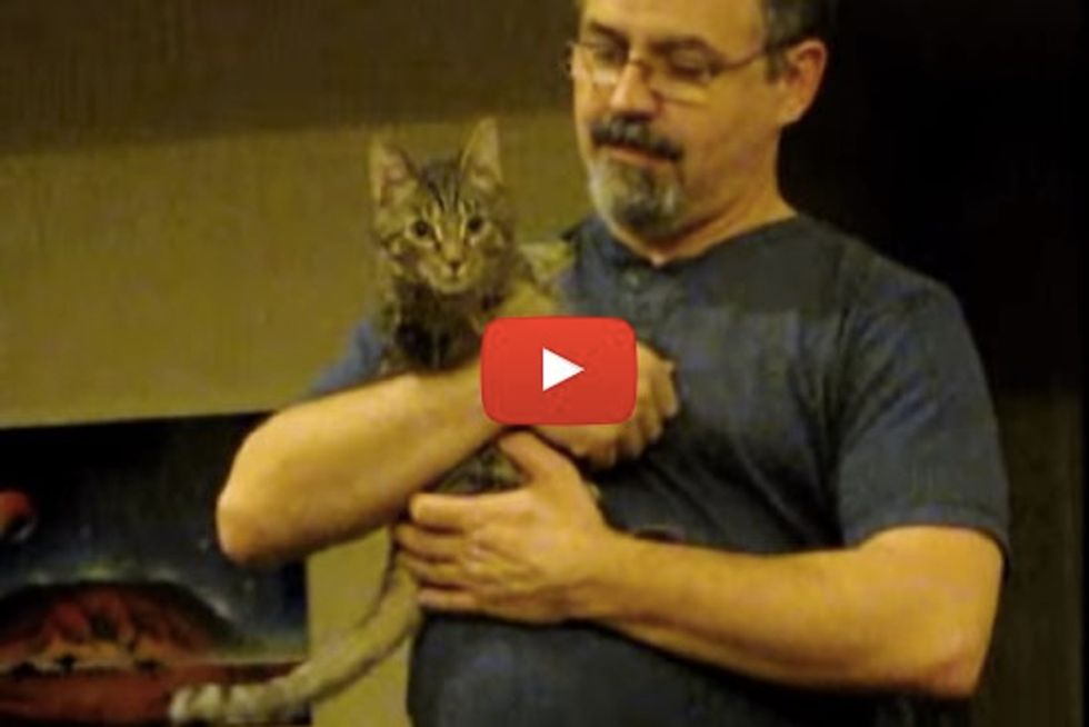 Mercury the 2 Legged Cat Demands Love and Cuddles When His Dad Gets Home from Work