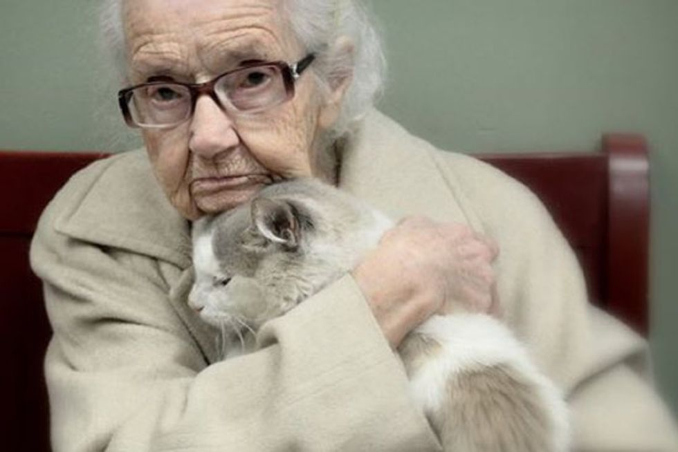 102-Year-Old Woman Fell In Love With A Shelter Cat