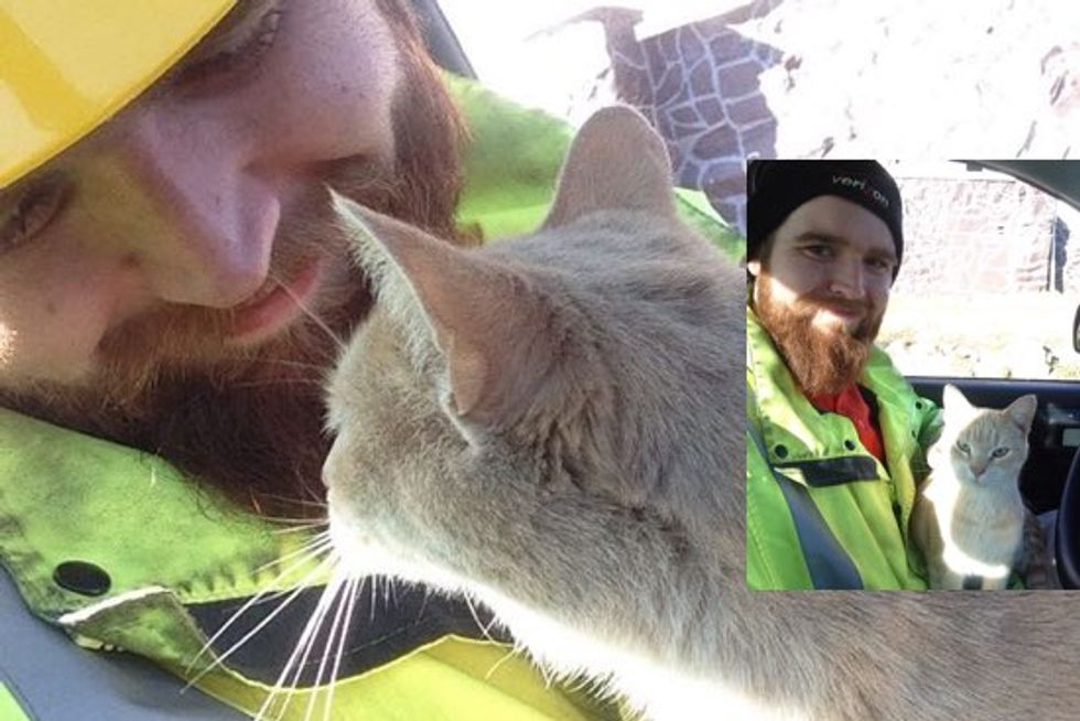 Friendly Cat Hops into Worker's Truck and Keeps Him Company