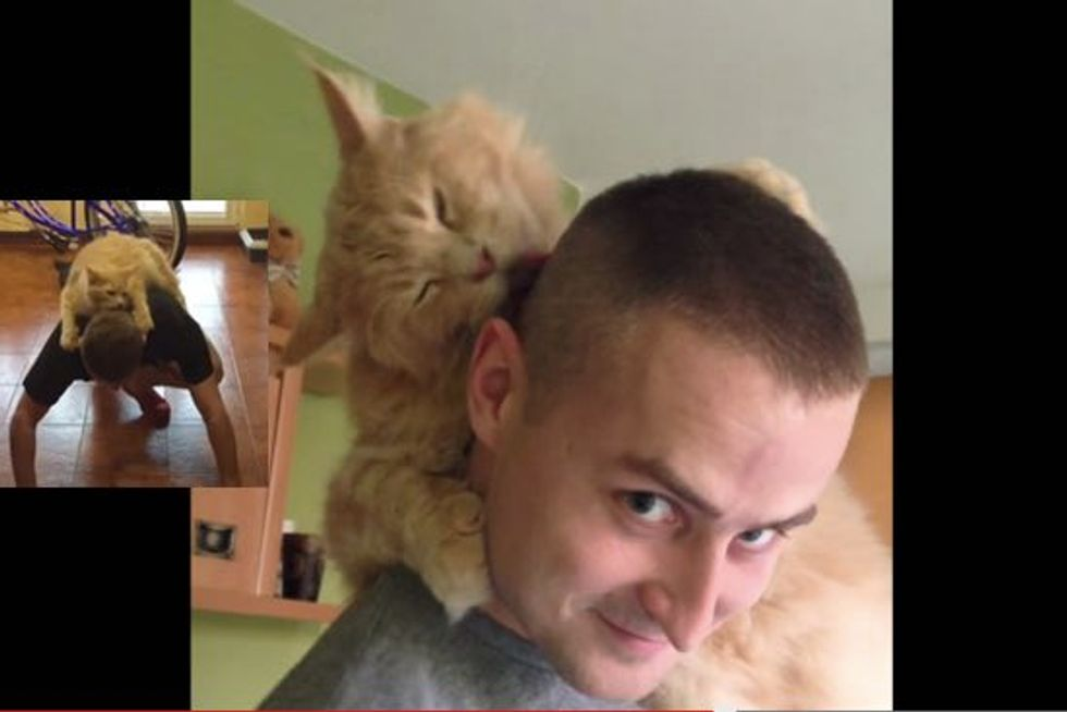 Cat Loves to Groom His Human Dad Even When He's Working Out
