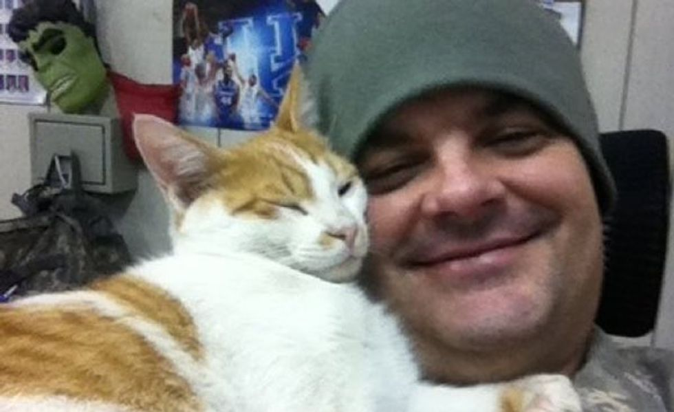Kentucky Soldier Giving Kuwaiti Cat a New Home in the US
