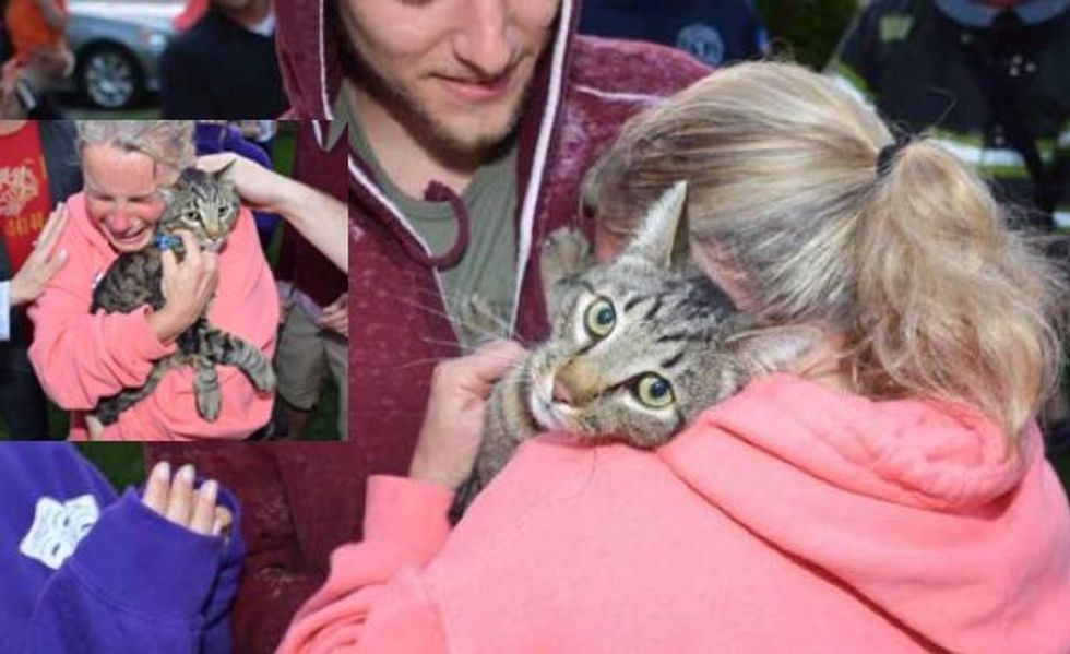 Emotional Rescue! Missing Cat Saved from Well Reunited with Petmom!