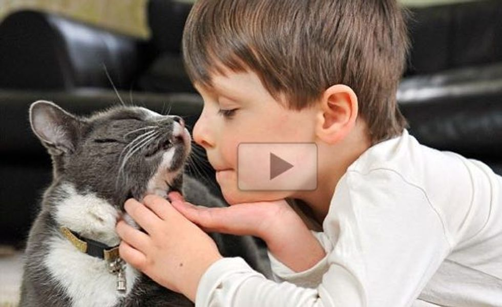 This is How Billy the Rescue Stray Transforms the Life of a Child with Autism