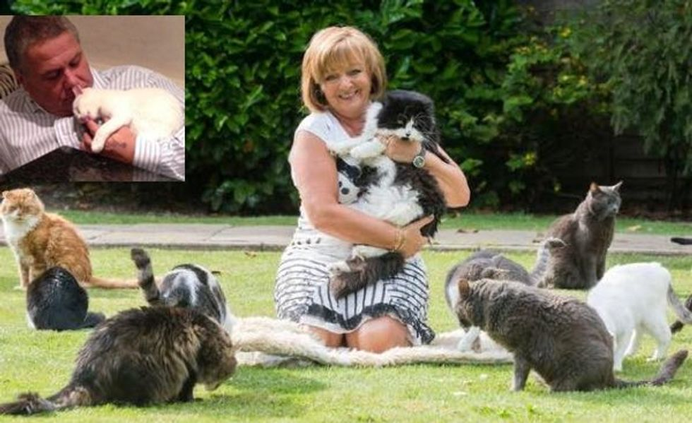 Woman Spends £90,000 a Year Caring for Abandoned Cats. Her Husband Doesn't Mind At All!