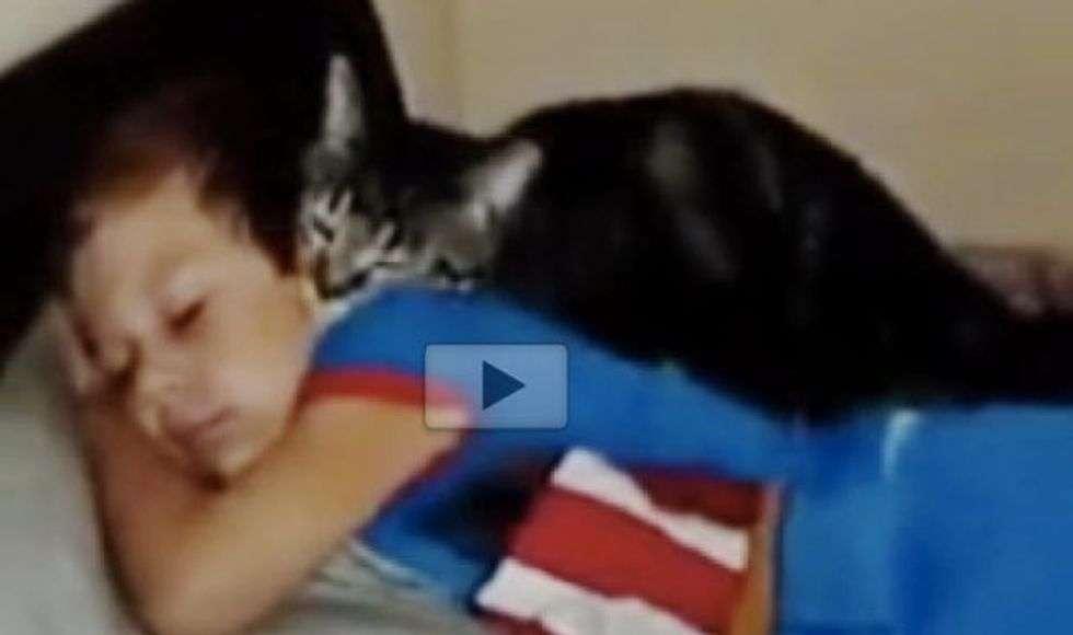 Cat Missed His Human Bestie. The Love He Gives When the Boy Returns Home!