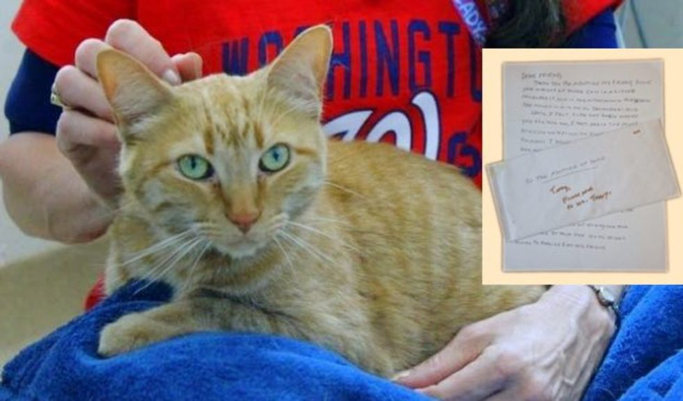 Woman Wrote Heartfelt Note to Her Cat's Future Human Before She Passed Away
