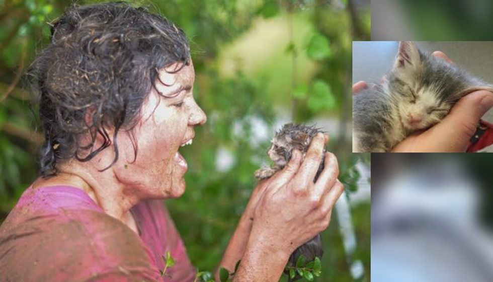 Rescuer Went to Heroic Lengths to Save Kitten from Drain Pipe as Water was Rising