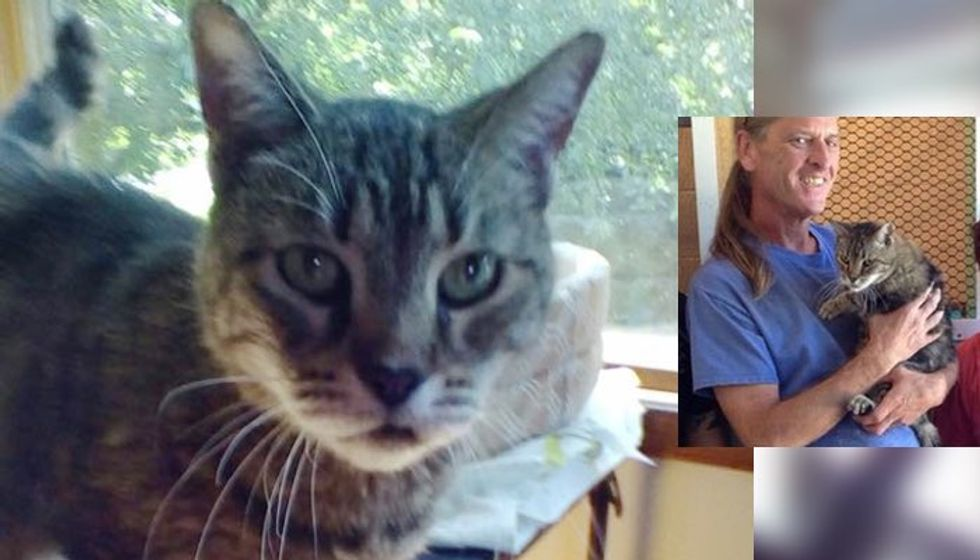 After 12 Years in Shelter, Cat Finally Found Her Forever Human