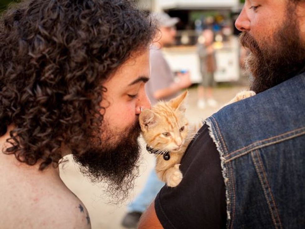 Biker Saves Injured Kitten and Continues His Trip While Caring for Him - Love Meow
