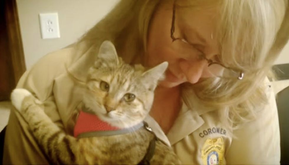 Coroner Fights To Keep Therapy Cat at the Office