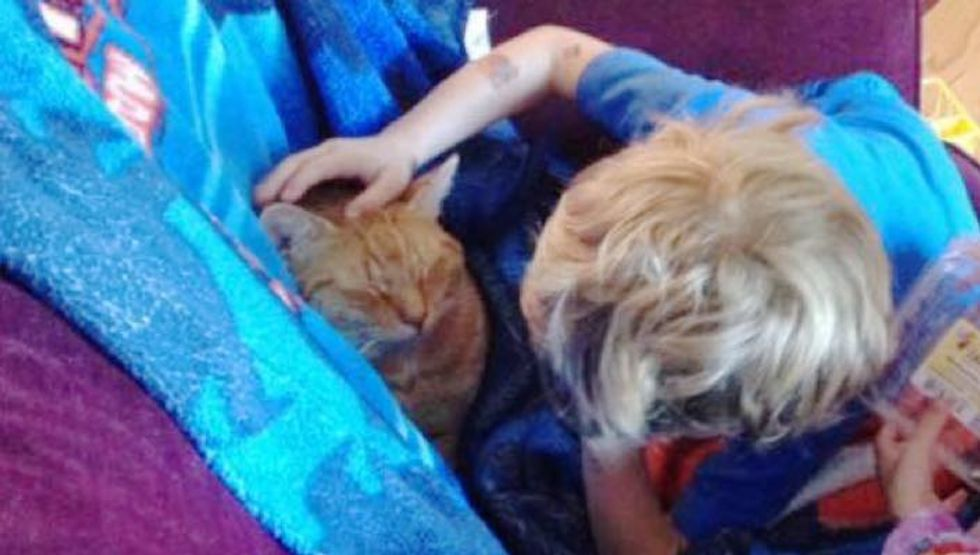 Boy Tucks in His Adopted Cat Every Time He Naps so He Knows He Has a Forever Home