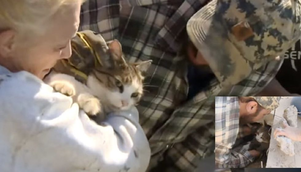 Landscaper Works Tirelessly to Save Cat Caught Under Cement