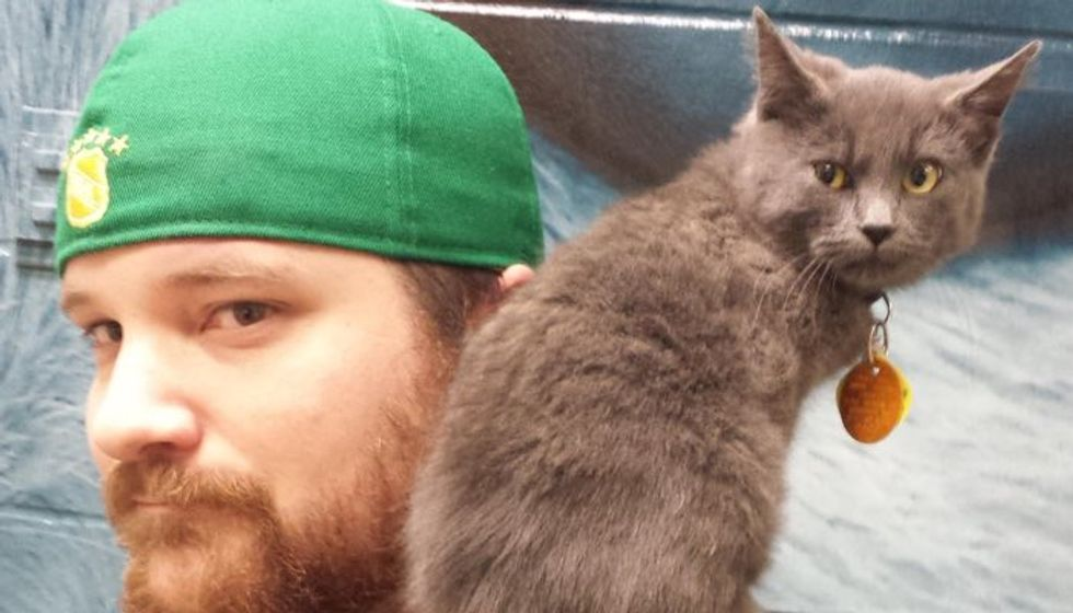 A Man Takes a Chance on a Hissy Shelter Kitty, After a Few Pets, Everything Changes..