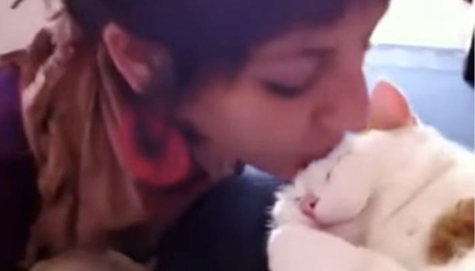 Kitty Meows for More Kisses on the Forehead