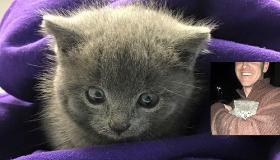 After 12 Hours, They Didn't Give Up Saving Stray Kitten Trapped Under Streets
