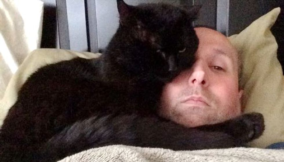 Cat Spent Most of His Life as a Stray Until He Found this Man