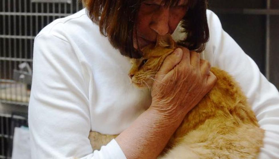 They Waited 8 Years Finally Reunited with Missing Cat Thanks to a Man