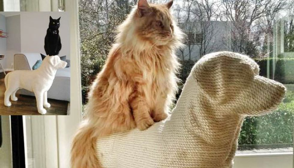 Man Builds Dog-shaped Scratching Post for His Beloved Cat