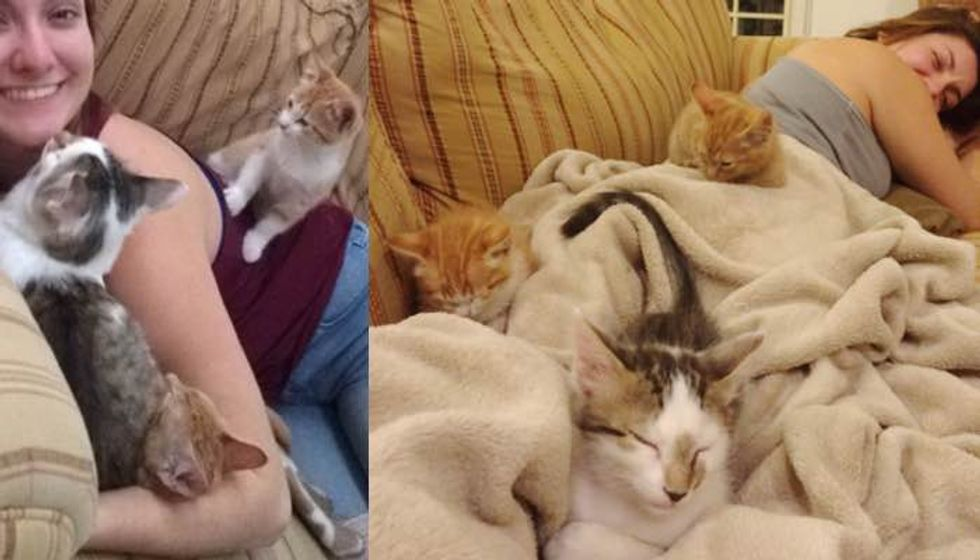 She Rescued These Fur Babies, Now They Can't Stop the Cuddles :)