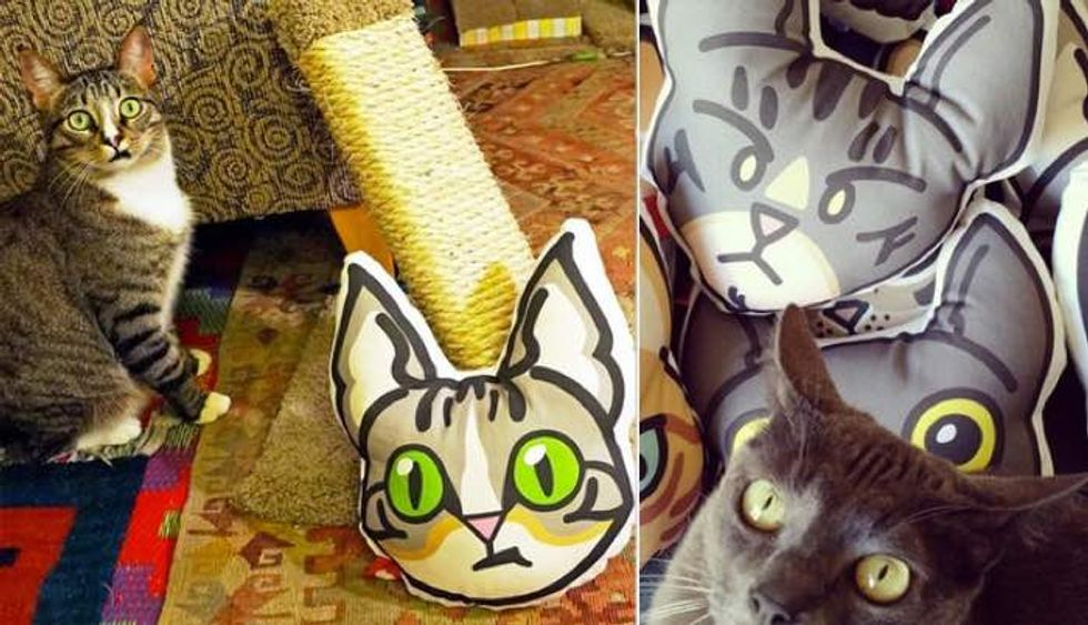 Young Woman Turns Her Love for Her Cats into Kitty Pillows!