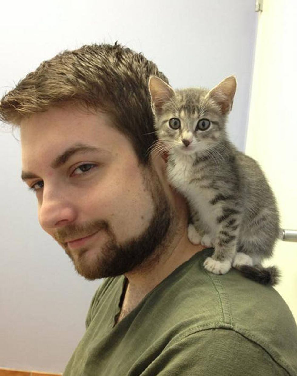 Stray Kitten Finds His Human