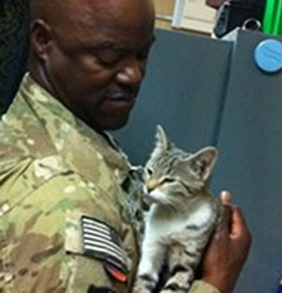 Afghan Kitten Is Reunited With Soldier In Texas