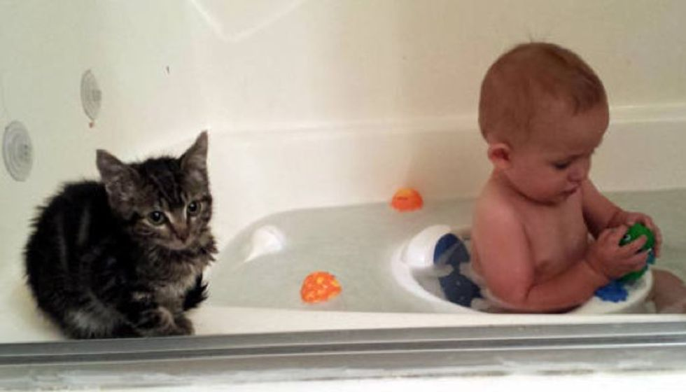 Kitty Won't Leave Her Baby Brother's Side, Then and Now
