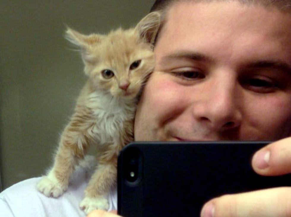 Garage Kitten Finds A Shoulder To Snuggle On