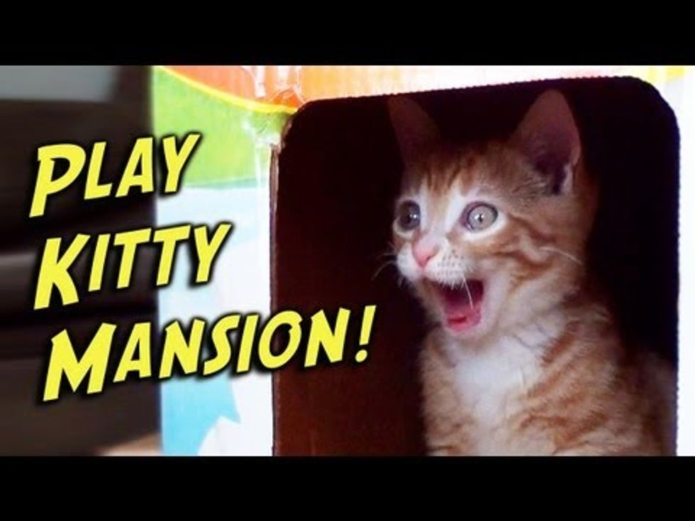 Play-Kitty Mansion