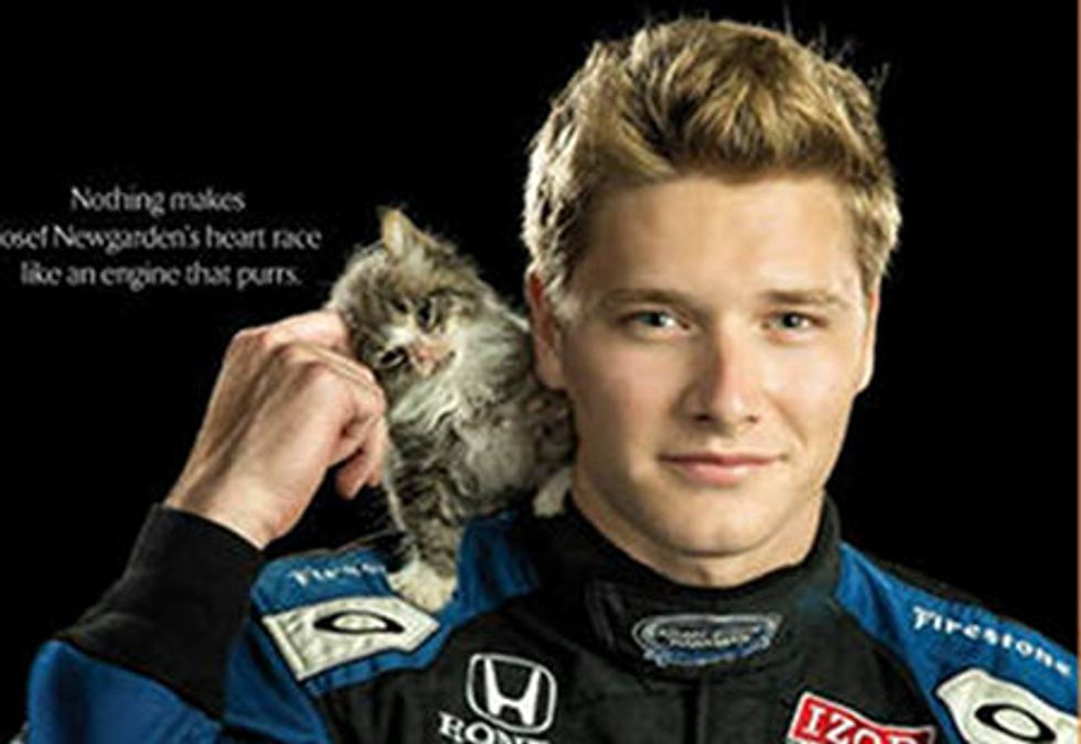 IndyCar Driver Adopts Kitten He Met In Baltimore Shelter