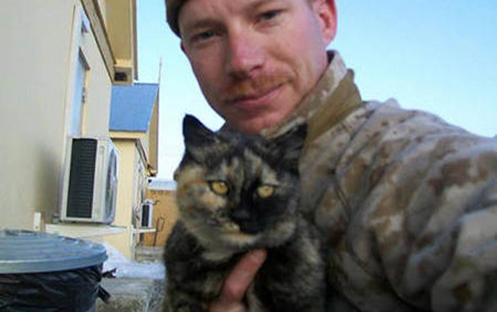 Tortie Cat Strays Into Soldier's Heart
