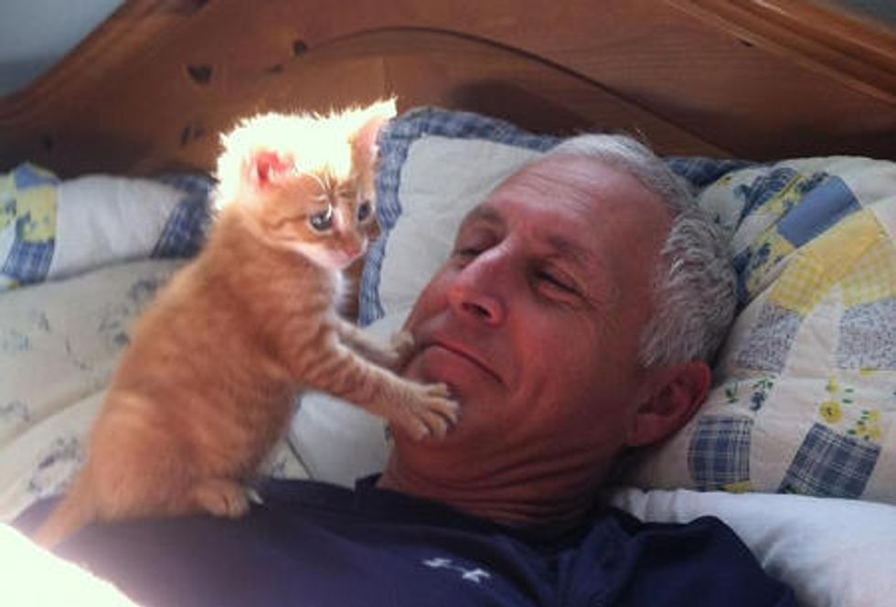 Kitten Fills Loneliness In Man's Heart