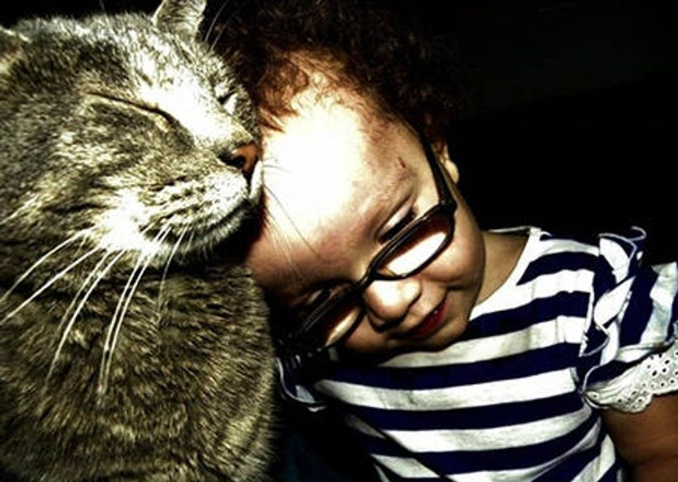 Special Needs Child Meets A Cat. This Happens...