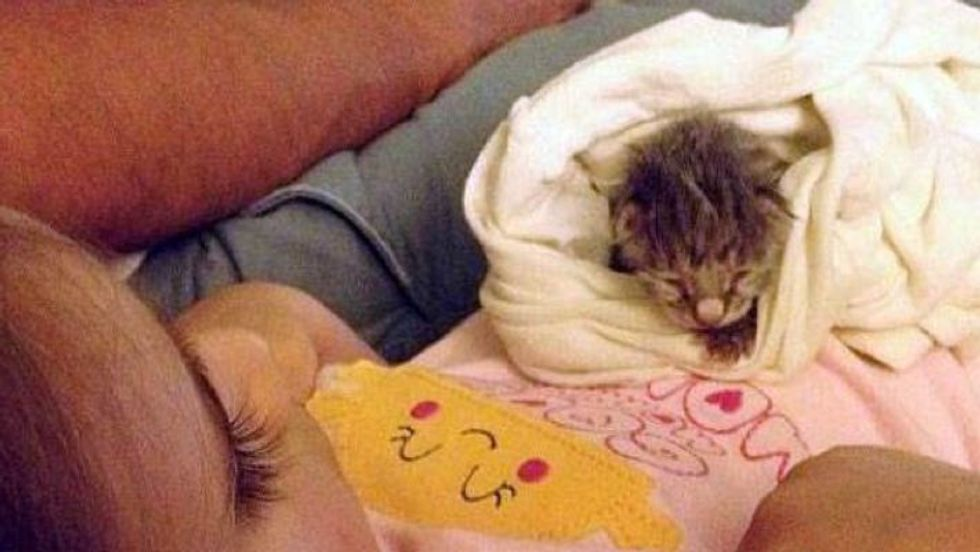 3 Year Old Girl And Orphan Kitten Growing Up Together