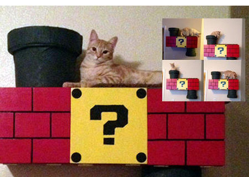 Nintendo Themed Cat Climber