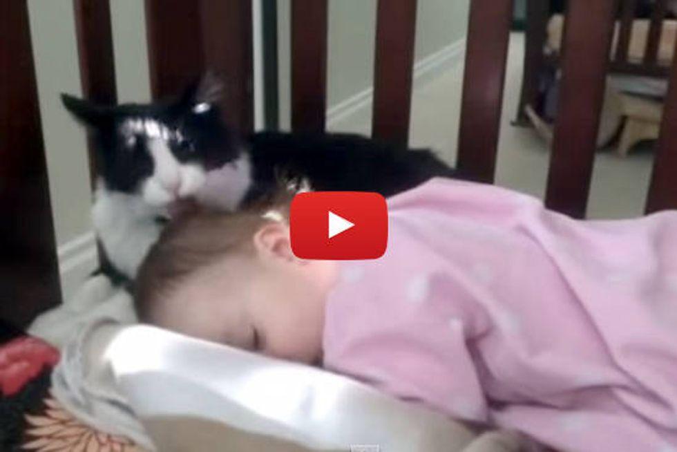 Kitty Gives Baby A Bath