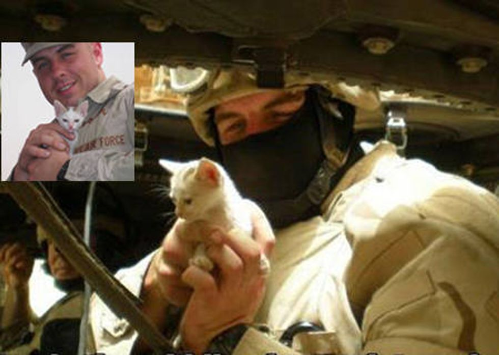 Soldiers Save Kitten From Iraq Sandstorm