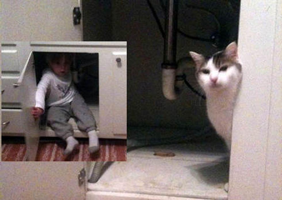 Afraid Of The Vacuum!