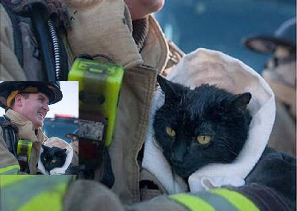 Firefighter Rescues Cat From House Fire