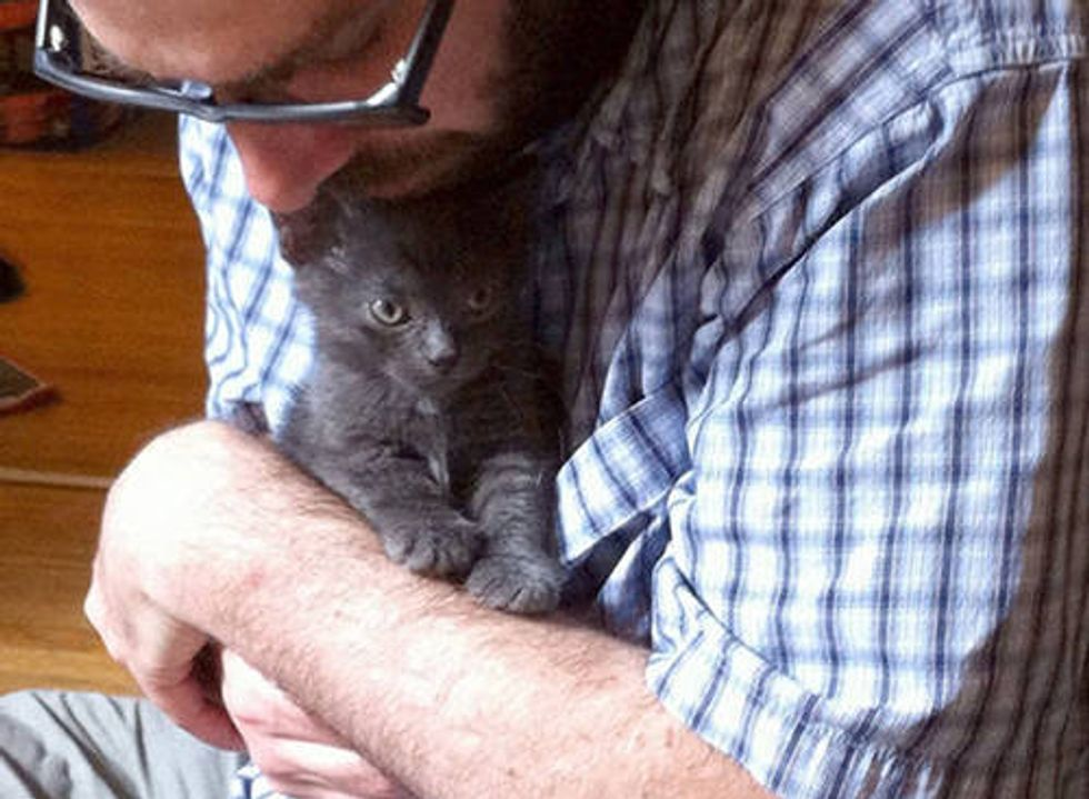 Quincy The Kitten Finds Home