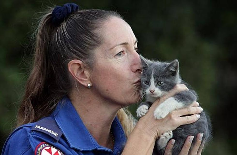 Smokey The Kitten Revived By Paramedics After House Fire