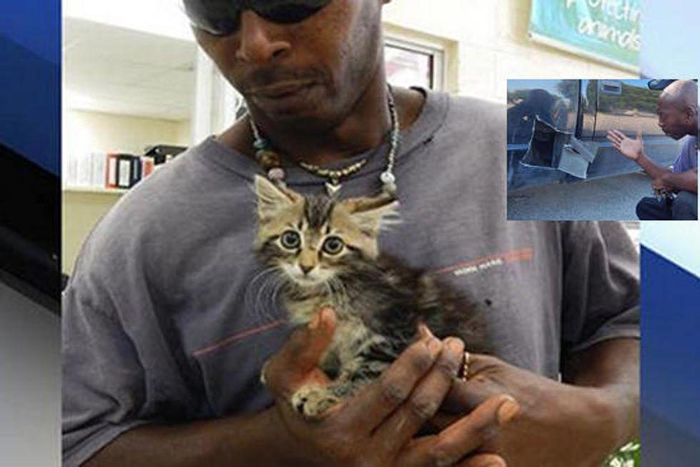 Man Saves Kitten By Cutting Open His Truck