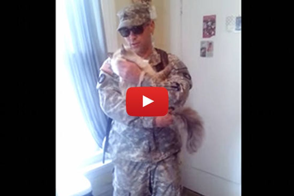 Cat Welcomes Home Soldier