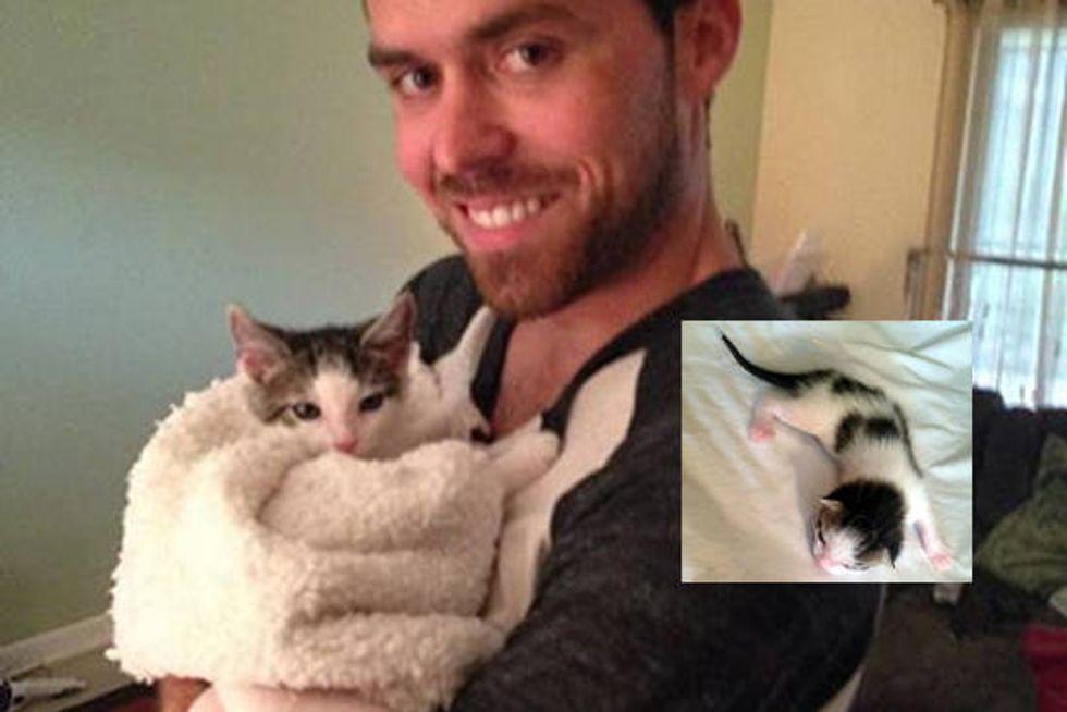 Tiny Kitten Journey To Forever Home