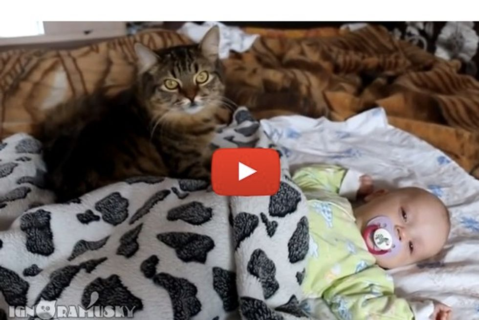 Gentle Cat Gives Baby A Massage & Cuddles