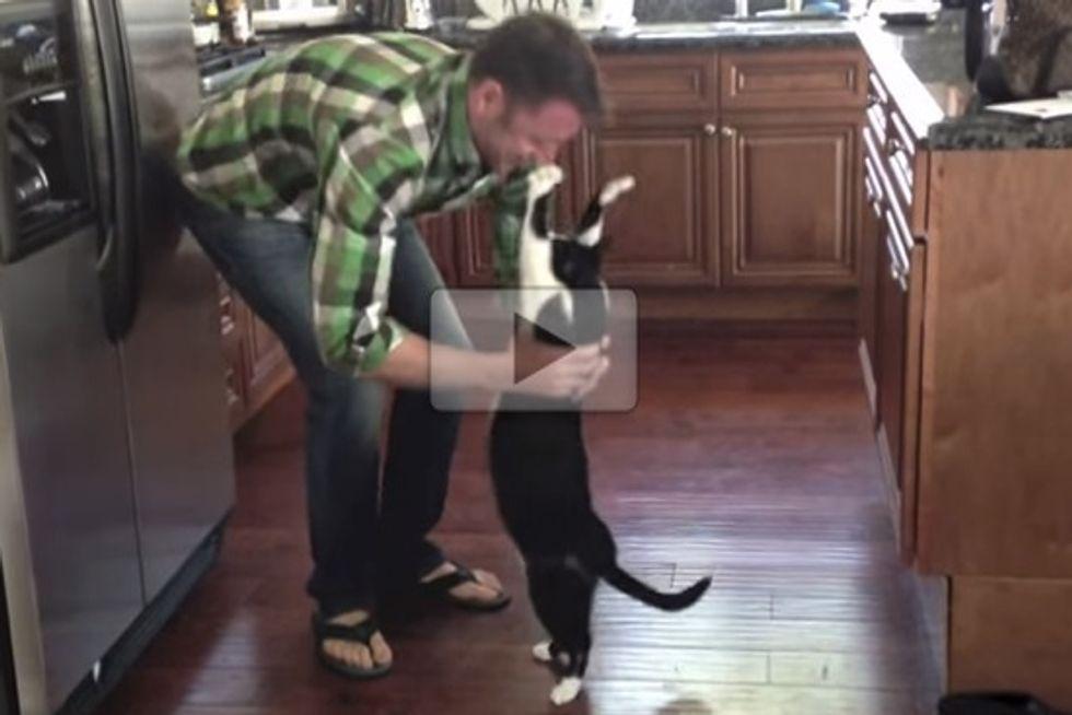Franzie Kitty Hug Compilation