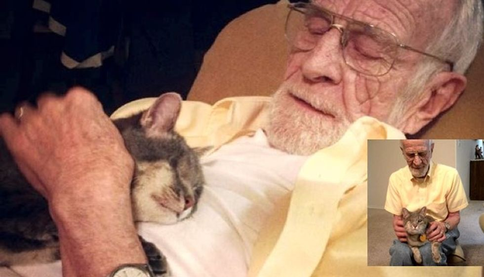 One Eyed Cat Adopted by Grandpa Who Can Only See Through One Eye